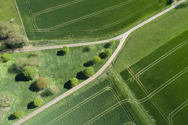Abstract aerial view of dirt road with trees and green agricultural fields, springtime, Franconia, Bavaria, Germany - RUEF02243