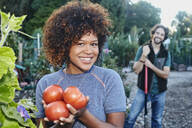Mixed race woman picking tomatoes in garden - BLEF06805