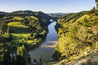 Whanganui River, North Island, New Zealand - RUNF02716