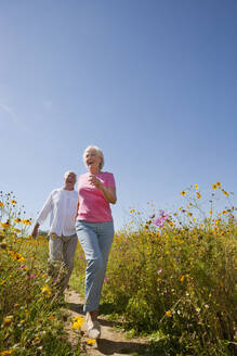Enthusiastic senior couple running on path through sunny wildflower meadow - JUIF01385