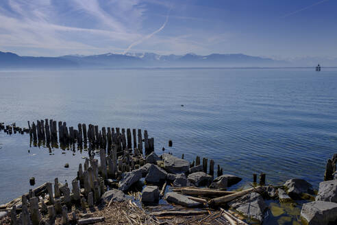 Wooden stakes at the harbour, Lake Constance, Lindau, Bavaria, Germany - LBF02599