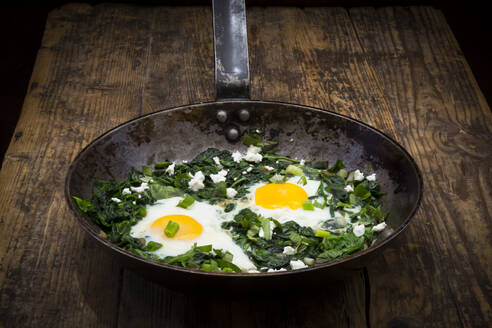 Green Shakshouka with baby spinach, chard, spring onions and basil in a pan - LVF08092