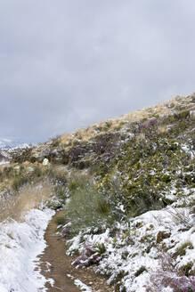 Snow at Way of St. James, near Cruz de Ferro, Spain - LMJF00096