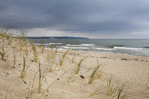 View to the sea from beach dune, Prora, Ruegen, Germany - WIF03951