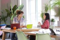 Two happy women talking at table in modern office - FKF03368