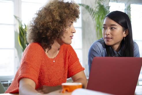 Two women with laptop talking in office - FKF03407