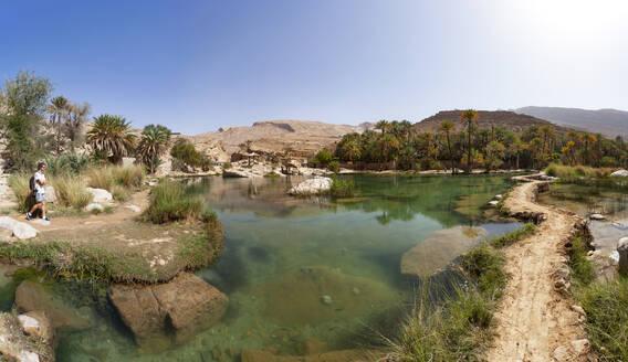 Tourist looking at Wadi Bani Khalid, Oman - WWF05120