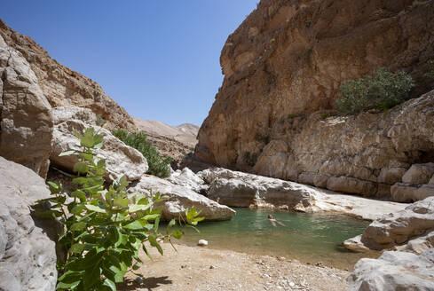 Man swimming in a small lake at Wadi Bani Khalid, Oman - WWF05123
