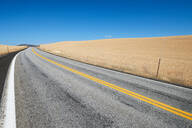 Wheat field along road in countryside, Tensed, Idaho, United States - ISF21645