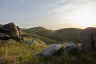 Grassy landscape, mountains in background, Tehachapi, California, United States - ISF21648