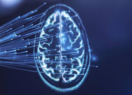 Artificial Intelligence, Fibre optics carrying data passing into brain - ABRF00412
