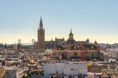 Cityscape with Cathedral of Seville with La Giralda, Seville, Spain - TAMF01560
