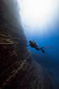 Female diver filming white tipshark, Revillagigedo Islands, Socorro, Baja California, Mexico - ISF21977