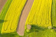 Aerial view over rape fields near Schlichten, Swabian Franconian forest, Germany - STSF02023