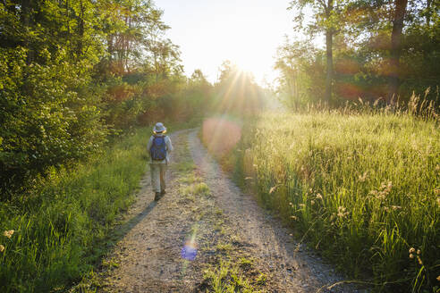 Frau mit Rucksack auf Waldweg bei Sonnenaufgang, Naturschutzgebiet Isarmündung, bei Plattling, Niederbayern, Bayern, Deutschland - SIEF08717