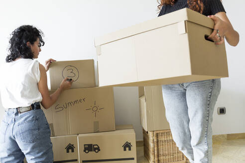 Two friends moving into new home - JPTF00213