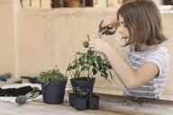 Girl repotting plant - ALBF00936