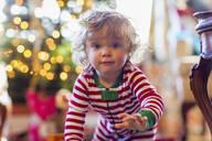 Caucasian baby boy crawling near Christmas tree - BLEF08692