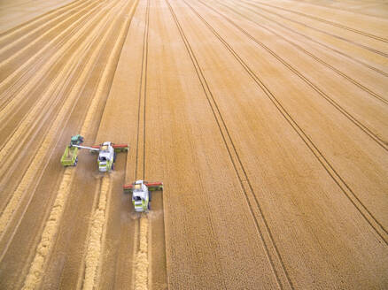 Aerial view of combine harvesters filling trailer in golden barley field - JUIF01978