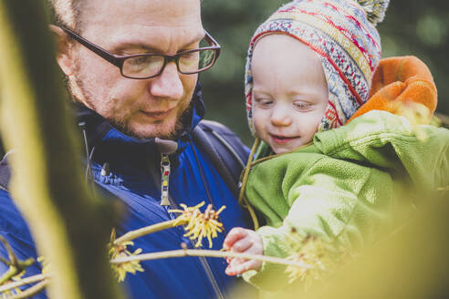 Baby girl watching witch hazel on father's arms - IHF00169