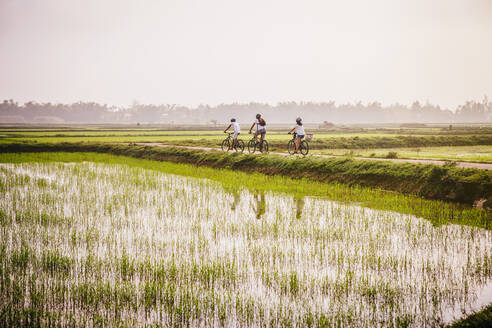 Tourists riding bicycles in rural landscape - BLEF09040