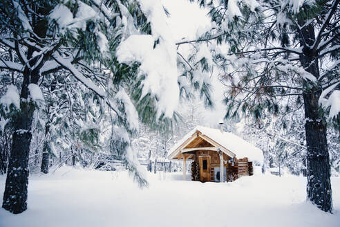 Cabin in snowy rural forest - BLEF09350
