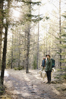 Couple with dog hiking in woods - HEROF37147