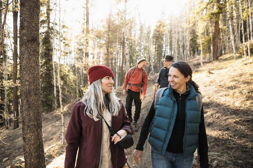 Friends hiking in sunny woods - HEROF37246