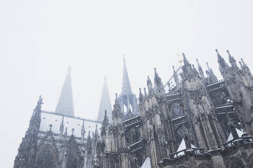 Low angle view of Cologne Cathedral during snowfall against sky - GWF06143