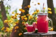 Close-up of fresh watermelon cocktail in glass and mason jar on tree stump in garden - BZF00506