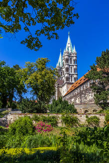 Low angle view of Naumburger Dom and trees against clear blue sky - PUF01677