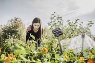 Young woman gardening - VGPF00048