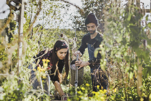 Couple watering plants in urban garden - VGPF00054