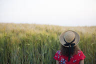 Back view of woman wearing straw hat and red summer dress with floral design standing in front of grain field - FLLF00245