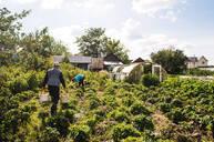 Caucasian farmers working in garden - BLEF10661