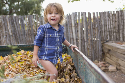 Caucasian boy standing in autumn leaves - BLEF11025