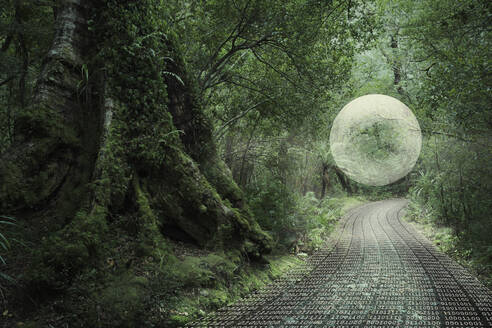 Glowing orb floating in forest over binary code path - BLEF11337