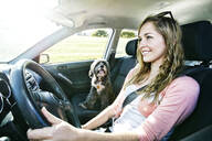 Caucasian woman driving with dog - BLEF11697
