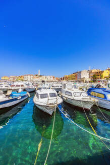 Harbour with boats at Rovinj, Istria, Croatia - THAF02560