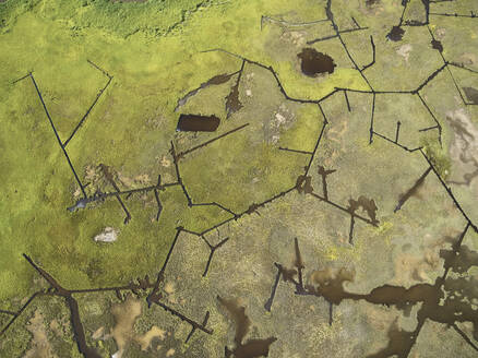Aerial view over marshes near Elliot Island, Maryland, USA - BCDF00398