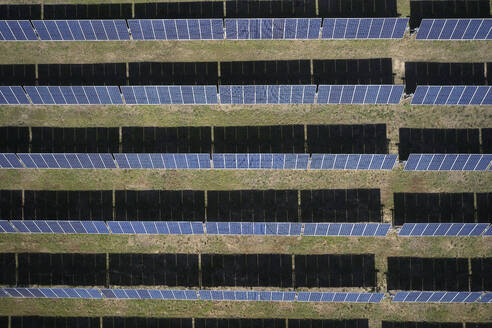 Solar field from above, Virginia, USA - BCDF00414