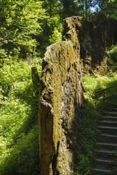 Growing rock of Usterling, Bavaria, Germany - SIEF08806