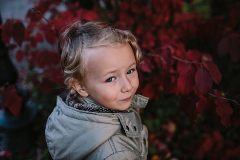 Portrait of girl in a park, red autum leaves - OGF00079