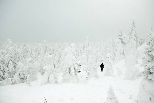 Caucasian hiker walking in snowy forest - BLEF12066