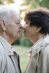 Profile of senior couple rubbing noses - AHSF00700