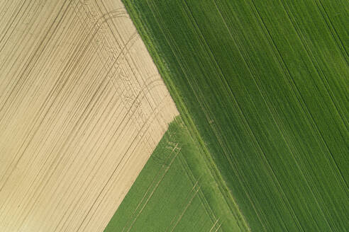 aerial view of agricultural fields, Franconia, Bavaria, Germany - RUEF02265