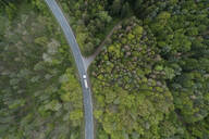 Aerial view of rural road through forest, Franconia, Bavaria, Germany - RUEF02289