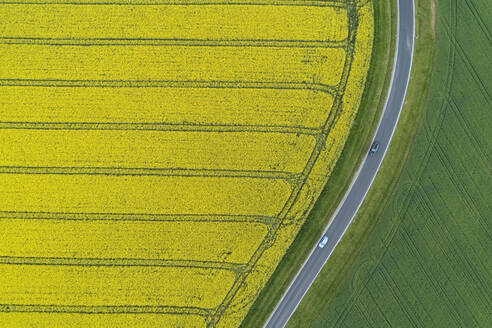 Abstract aerial view of rural road through agricultural fields with oilseed rape field and green wheat field, Franconia, Bavaria, Germany - RUEF02292