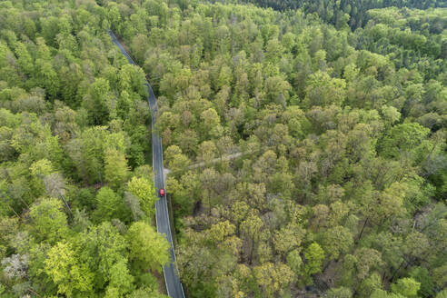 Aerial view of road through forest, springtime. Steigerwald, Franconia, Bavaria, Germany. - RUEF02295