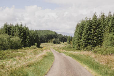 Empty country road, Cairngorms, Scotland, UK - NMS00326